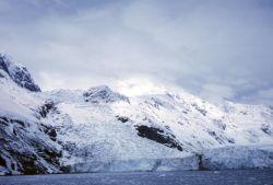 Tidewater Glacier in Prince William Sound Photo