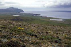 St. George Island, Pribilofs 1987 Photo