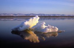 1002 Area: Beaufort Sea Ice, 1002 Area and Brooks Range Photo