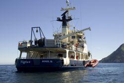 Off loading skiff from MV Tiglax Photo