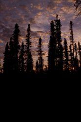 Sunset on the Innoko NWR Photo