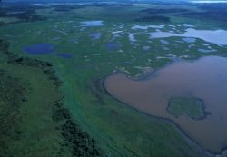 Mud River Area - Aerial View Photo