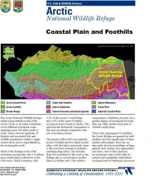 Information map: Northern Alaska ecological zones Photo