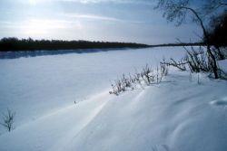 Innoko River in Winter Photo