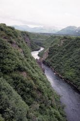 Kemuk River Photo
