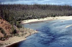 Middle Coleen River in Summer Photo