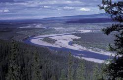 Coleen River Photo