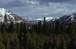Alaska Range and Savage River Photo
