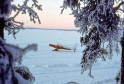 Turbine Beaver N754 on Snow Photo
