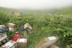 Chowiet Island camp set-up, Semidi Islands Photo