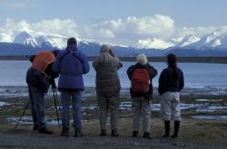 Kachemak Bay Shorebird Festival viewing station Photo