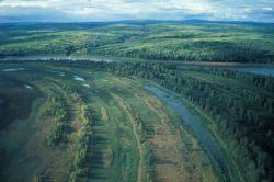 Innoko River Photo