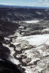 Nowitna River Area Photo
