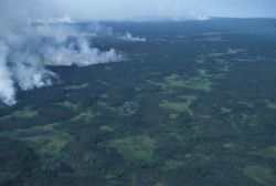 Forest Fire in the Innoko Refuge Photo