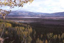 Scenic View of Tetlin NWR Photo