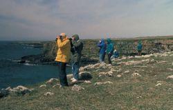 St. Paul Island Tourists at Ridge Wall, Pribilofs Photo
