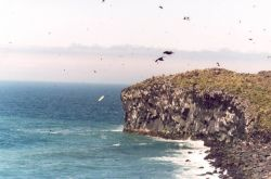 Bogoslof Island, Kenyon Dome of basalt columns Photo