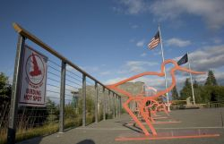 Alaska Islands and Ocean Visitor Center bike racks Photo