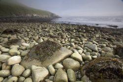 Chowiet Island beach Photo