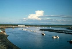 Fishing Boats on the Kenai River Photo