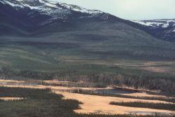 Nowitna River Photo