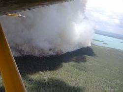Kng County Creek Fire 2005 Photo