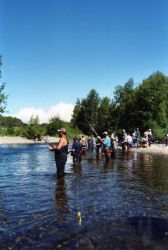 Combat Fishing for King Salmon Photo
