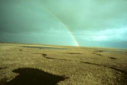 Yukon Delta NWR Summer Rainbow Photo
