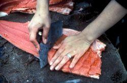 Processing Salmon Photo