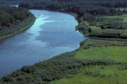 Innoko River in Summer Photo