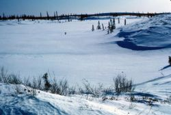 Mud River Drainage in Winter Photo
