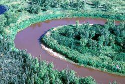 Mud River Meander Photo