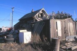 Kotzebue Log Home and Caribou Antlers Photo