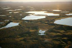 Kodosin Lakes, Kanuti NWR Photo