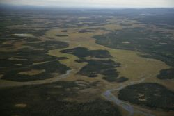 Kanuti NWR wetlands Photo