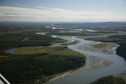 Koyukuk River on the Kanuti NWR Photo
