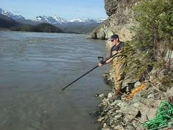 Subsistence Dipnetting on Copper River Photo