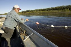 Subsistence fishing on the Koyukuk River Photo