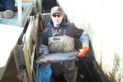 Crooked Creek Steelhead Trout Photo