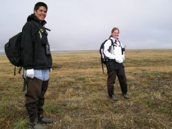 Students Conducting Annual Steller's Eider Breeding Pair Survey Photo