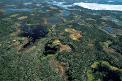 Innoko Refuge Wetlands Photo