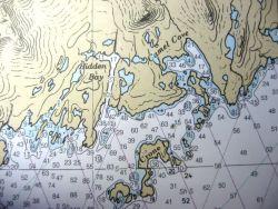 Adak - Hidden Bay June 4-11, 2002(Album) Photo