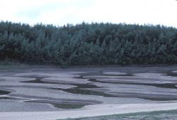 Koyukuk River Sandbars Photo