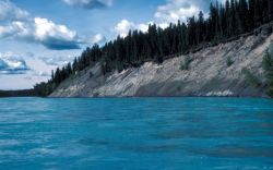 Bank Erosion Along the Kenai River Photo