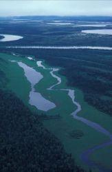 Innoko Refuge River Photo