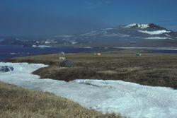 St. Matthew Island field camp at North Lake, June 1984 Photo