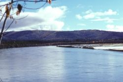 Tanana River Photo