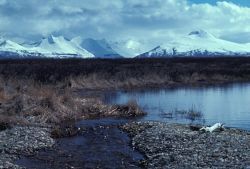Becharof Lake Landscape Photo