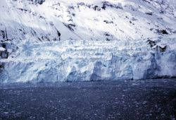 Tidewater Glacier in Prince William Sound Photo