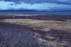 Lake Becharof Landscape Photo